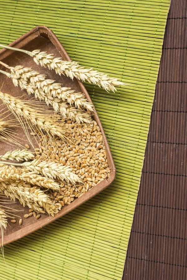 Reap of durum wheat from different varieties.  Wheat grains in a plate. Top view stock photos
