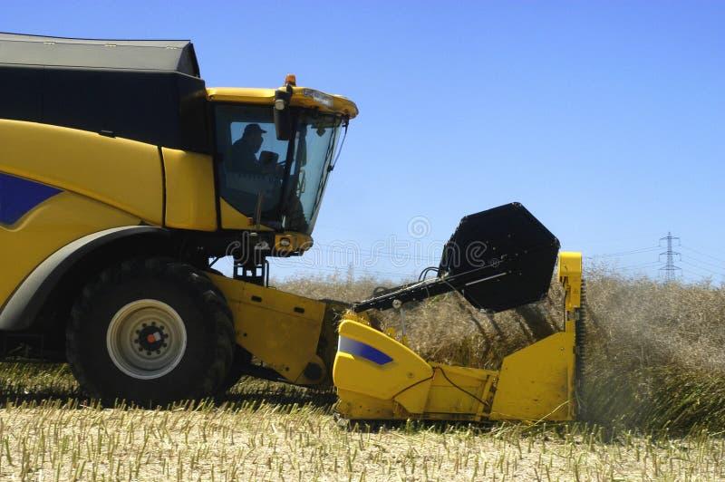 Download Reaping-machine Threshing-machine With Work Stock Photo - Image of crop, vegetable: 24009184