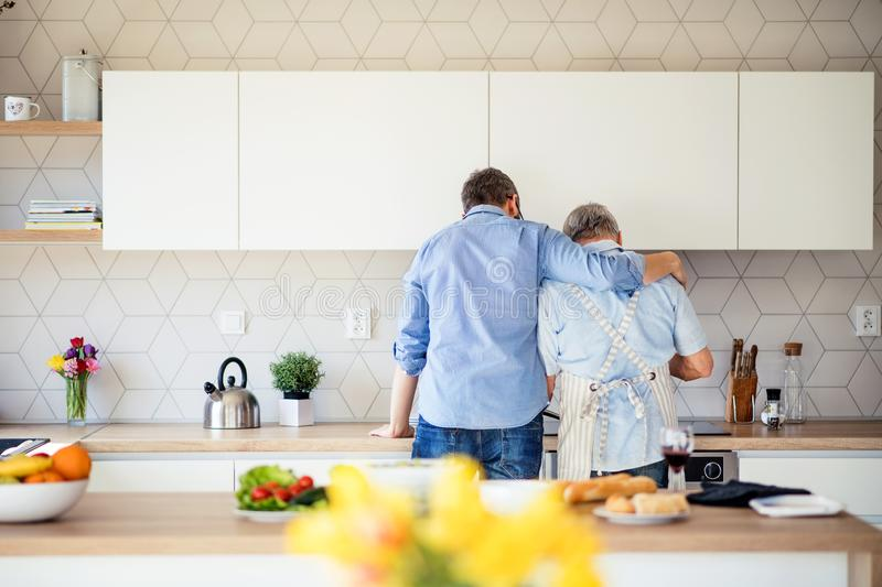 Rear view of adult son and senior father indoors at home, cooking. A rear view of adult son and senior father indoors in kitchen at home, cooking stock photos