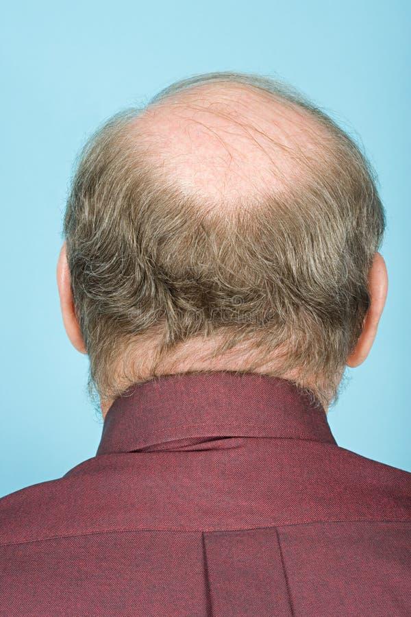 Rear view of balding man royalty free stock image