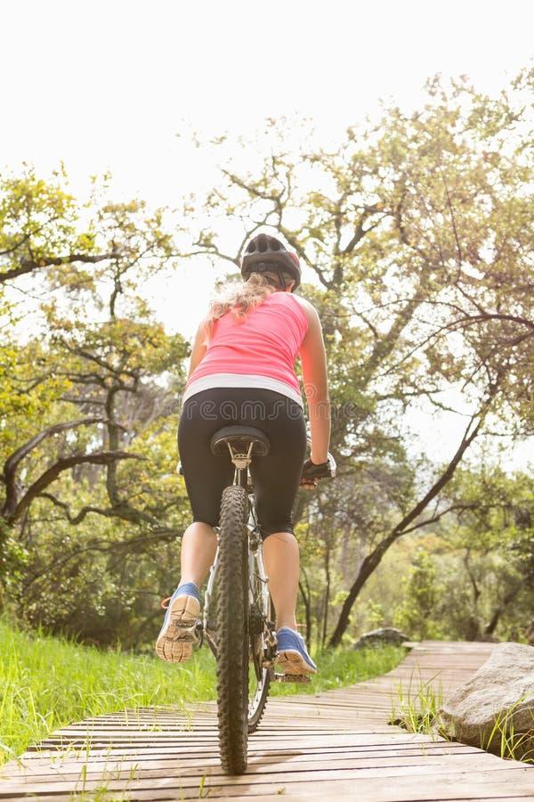 Rear view of blonde athlete mountain biking stock photography