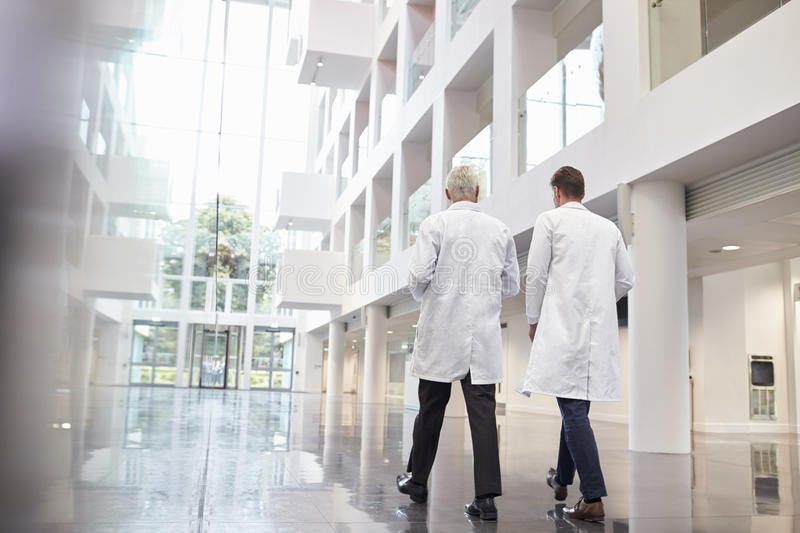 Rear View Of Doctors Talking As They Walk Through Hospital royalty free stock image