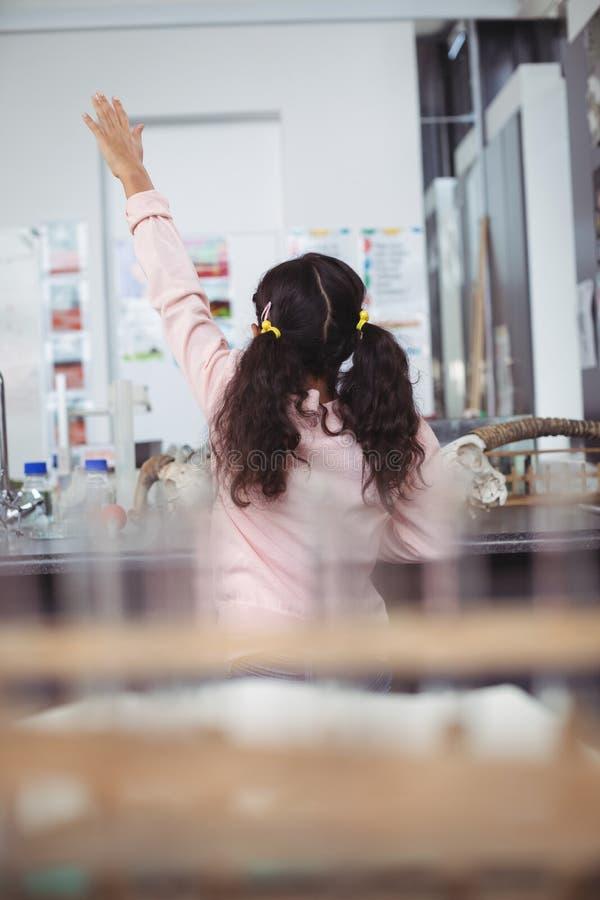 Rear view of elementary schoolgirl raising hand at science laboratory. Rear view of elementary schoolgirl raising hand by desk at science laboratory royalty free stock photo