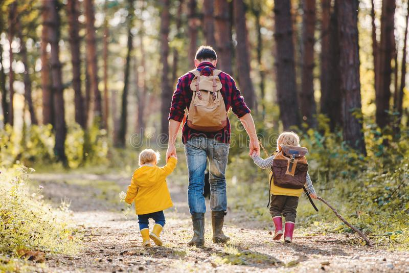 A rear view of father with toddler children walking in an autumn forest. royalty free stock photos