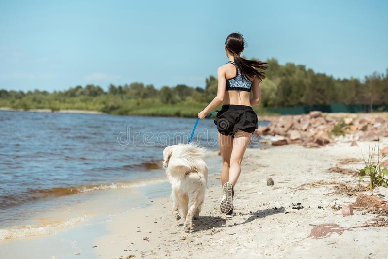 rear view of female jogger running with dog on beach royalty free stock photo
