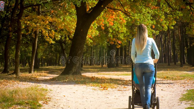 Rear view shot of young mother with baby trolley walking in autumn park stock photos