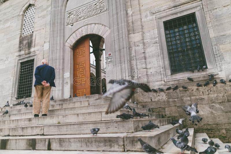 rear view of man climbing up stairs, pigeons flying near building stock images