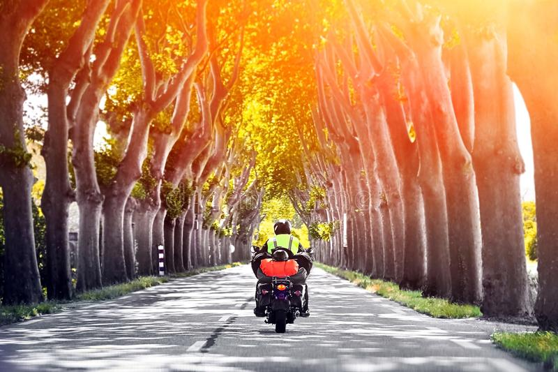 Rear view of man riding motorcycle through tunnel of trees lane royalty free stock photography
