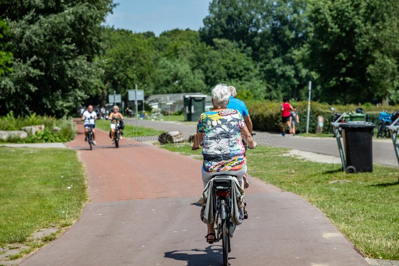Rear view of a mature woman riding bike in a park royalty free stock photos