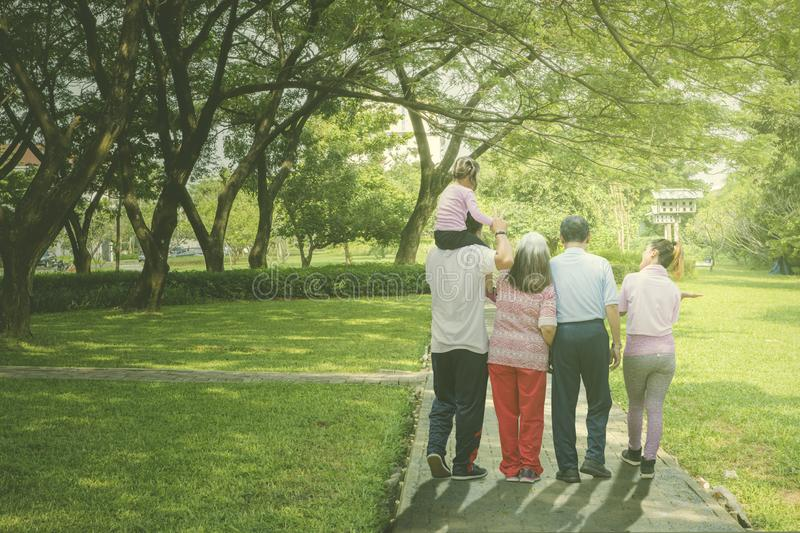 Multi generation family walks in the park. Rear view of multi generation family walking together in the park stock photo