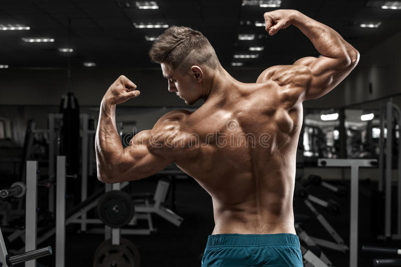 Rear view muscular man posing in gym, showing back and biceps. Strong male naked torso, working out royalty free stock photo