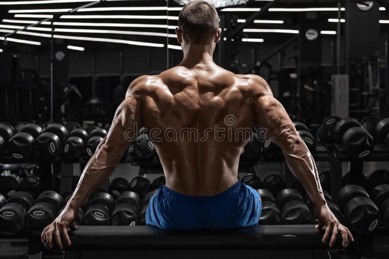 Rear view muscular man showing back muscles at the gym. Strong male naked torso, workout.  stock photography