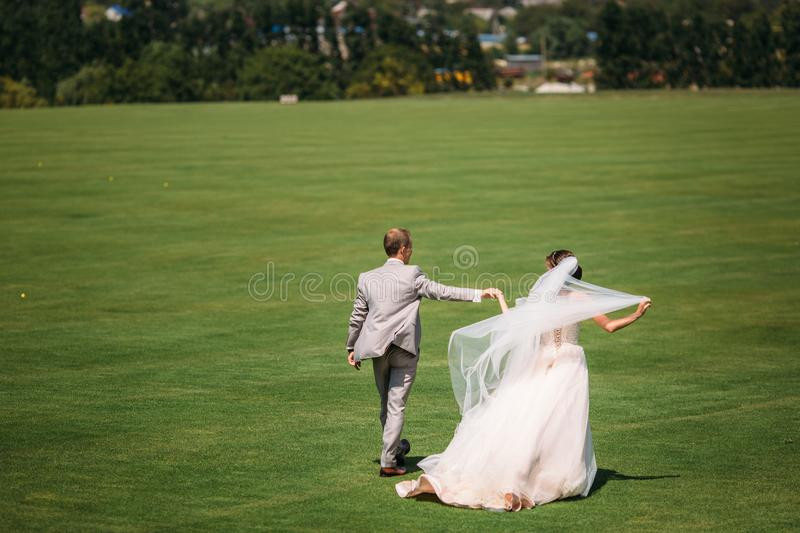 Rear view, newlyweds are walking along the green field of the golf club on a wedding day. The bride and groom in wedding. Dresses are holding hands. Man in a stock photos