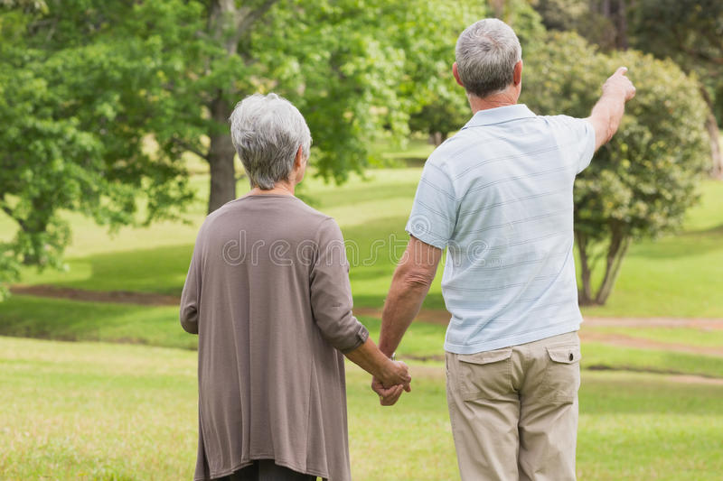 Rear view of a senior couple holding hands at park royalty free stock images