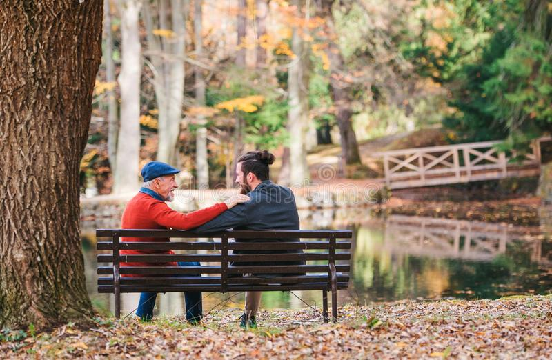 Rear view of senior father and his son sitting on bench by lake in nature, talking. royalty free stock images