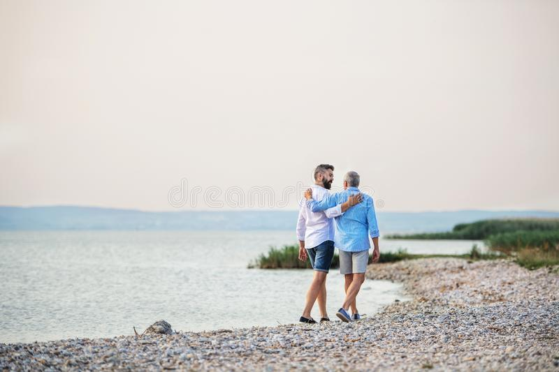 Rear view of senior father and mature son walking by the lake. Copy space. A rear view of senior father and mature son walking by the lake. Copy space royalty free stock photography