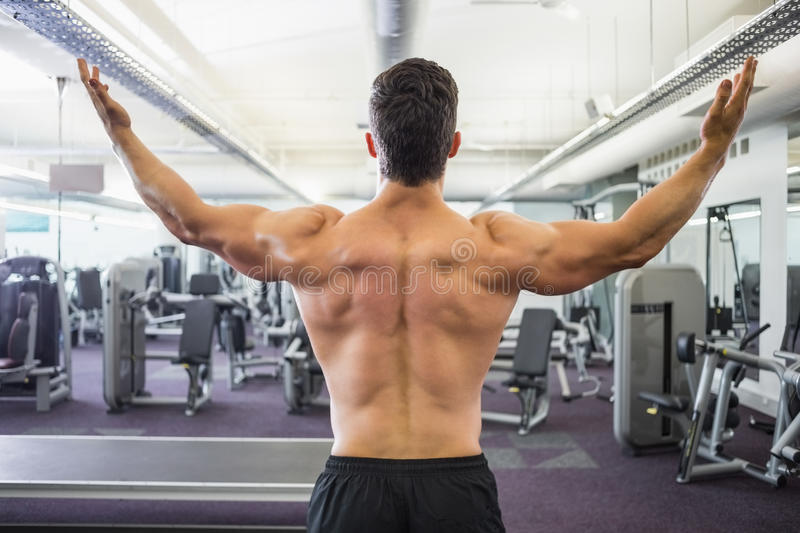 Rear view of shirtless muscular man in gym royalty free stock photo