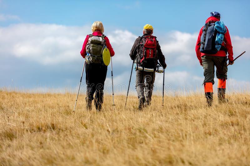 Rear view shot of young friends in countryside during summer holiday hiking. Group of hikers walking in the nature. royalty free stock photography