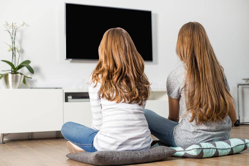Rear view of siblings watching TV at home stock image