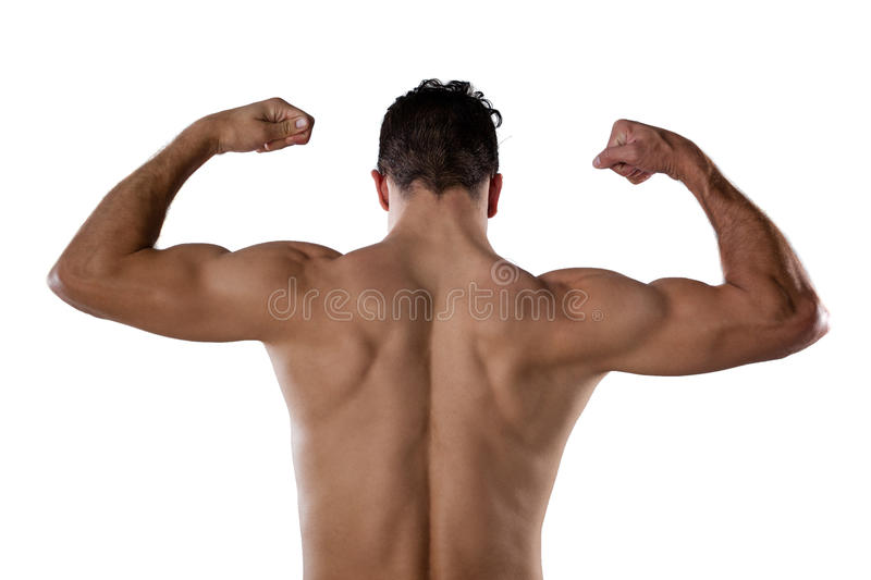 Rear view of sports person flexing muscles. While standing against white background stock photos