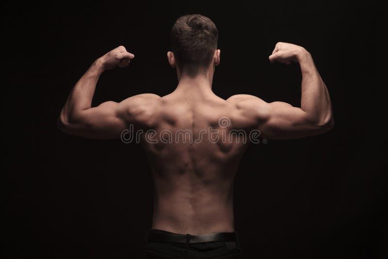 Rear view of topless muscular man posing in studio stock photos