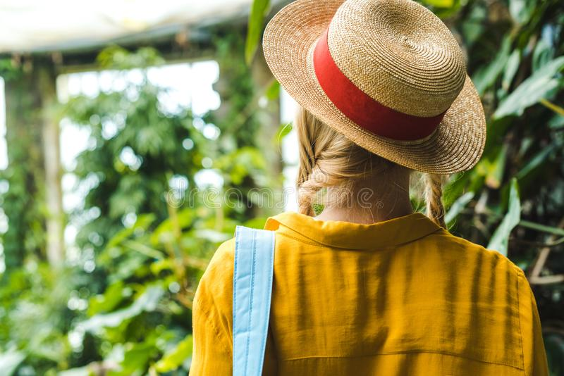 rear view of woman in straw hat surrounded royalty free stock images
