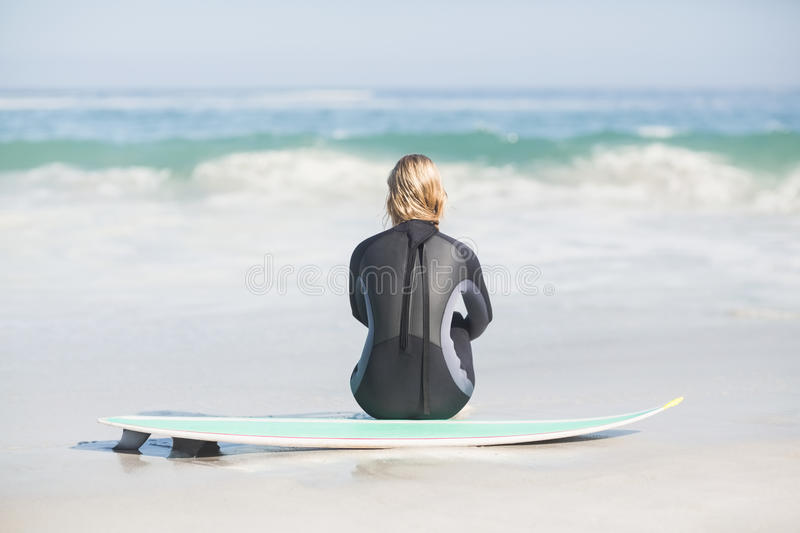 Rear view of woman in wetsuit sitting with surfboard on the beach. On a sunny day royalty free stock image