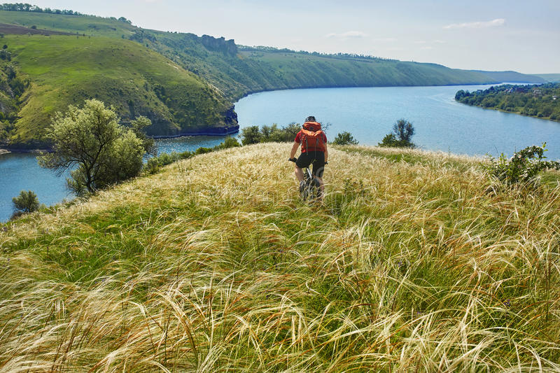 Rear view of the young attractive cyclist riding mountain bike in the summer meadow. stock images
