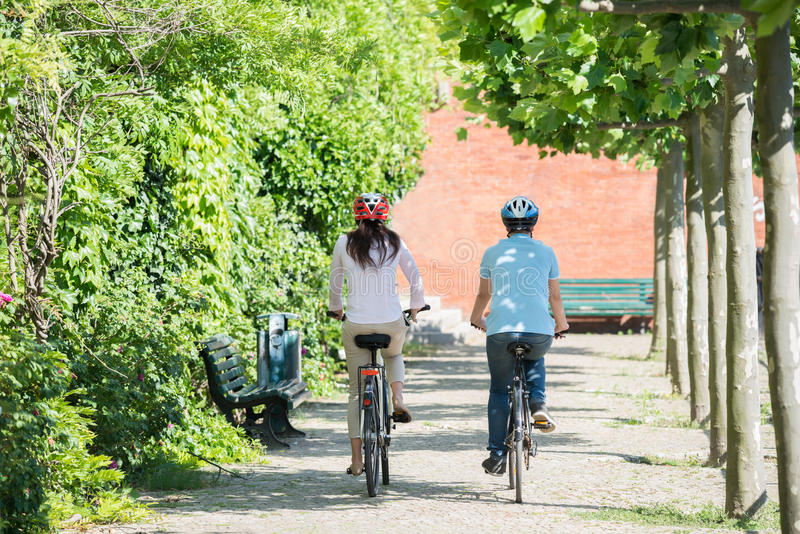 Couple Riding On Bicycles In The Park. Rear View Of Young Couple Riding On The Bicycles In Park royalty free stock photo