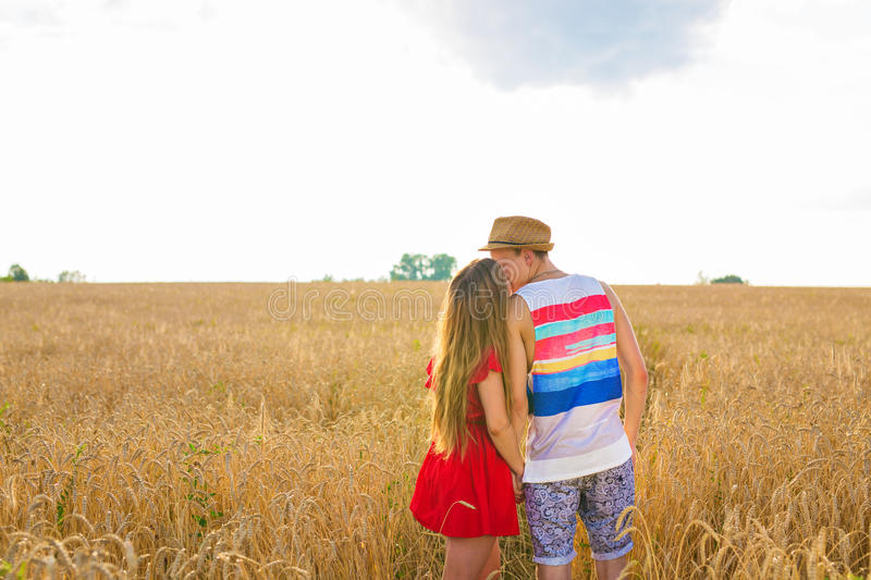 Rear view of young couple in the wheat field. Summer or autumn season, copy space.  stock photo