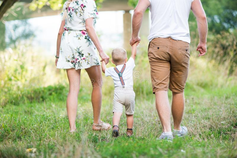 A rear view of young family with a small toddler boy in sunny summer nature. royalty free stock photo