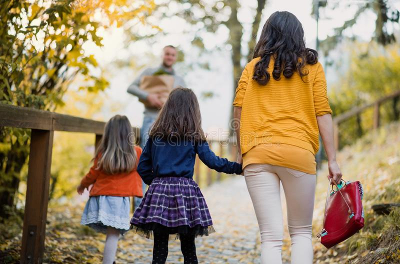 A rear view of young family with children walking in park in autumn. royalty free stock photos