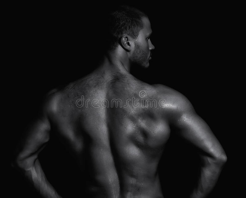 Download Rear View Of Young Muscular Man Stock Image - Image: 26832069