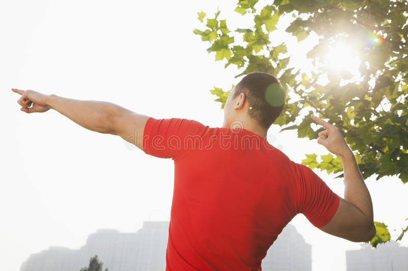 Download Rear View Of Young Muscular Man Stretching By A Tree, Arms Raised And Fingers Pointing Towards The Sky In Beijing, China With Lens Stock Image - Image: 31106621