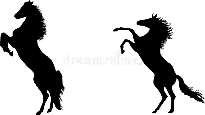 Rearing horses in silhouette stock illustration