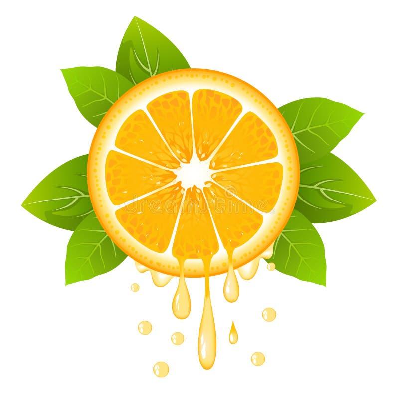 Rebanada anaranjada realista con las hojas y los descensos del jugo Fruta jugosa Fruta cítrica fresca en el ejemplo blanco del ve stock de ilustración