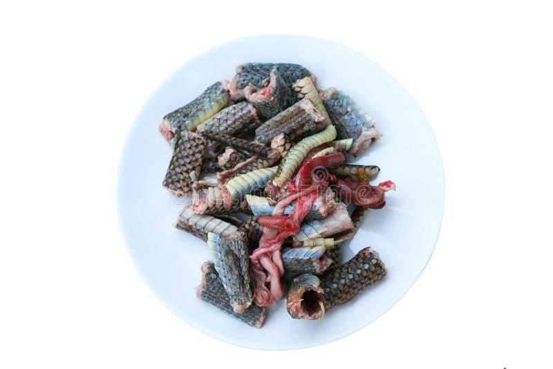 Rebanada de carne de la serpiente en serpiente de rata indochina del plato, preparada para cocinar aislada en el fondo blanco foto de archivo