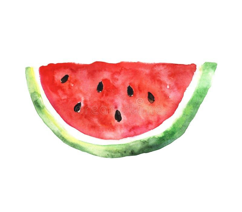 Rebanada de la sandía watercolors stock de ilustración