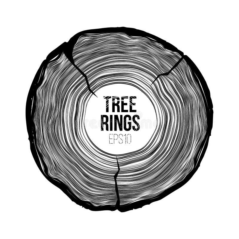 Rebanada de los anillos de árbol del vector con la grieta Textura anual de la vida Modelo de la viruta stock de ilustración