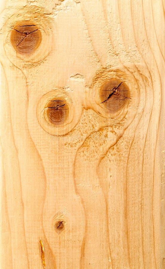 Rebanada de madera fotos de archivo