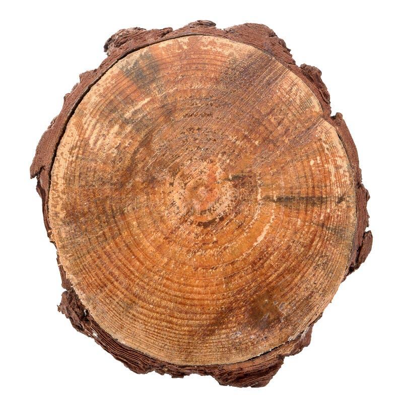 Rebanada de madera del registro fotografía de archivo