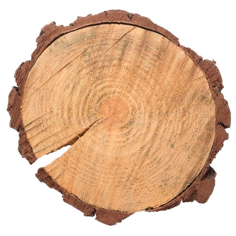 Rebanada de madera del registro foto de archivo