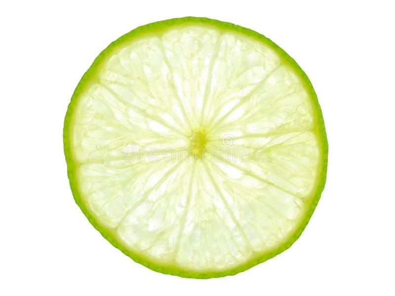 Rebanada verde del limón puesta a contraluz imagen de archivo