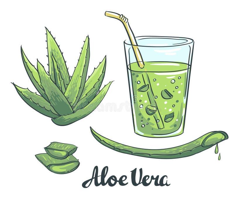 Rebanadas de áloe Vera en un vidrio Coctel sano stock de ilustración
