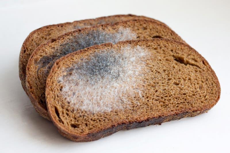 Rebanadas de pan negro, cubiertas con el molde Molde en bread_ fotos de archivo