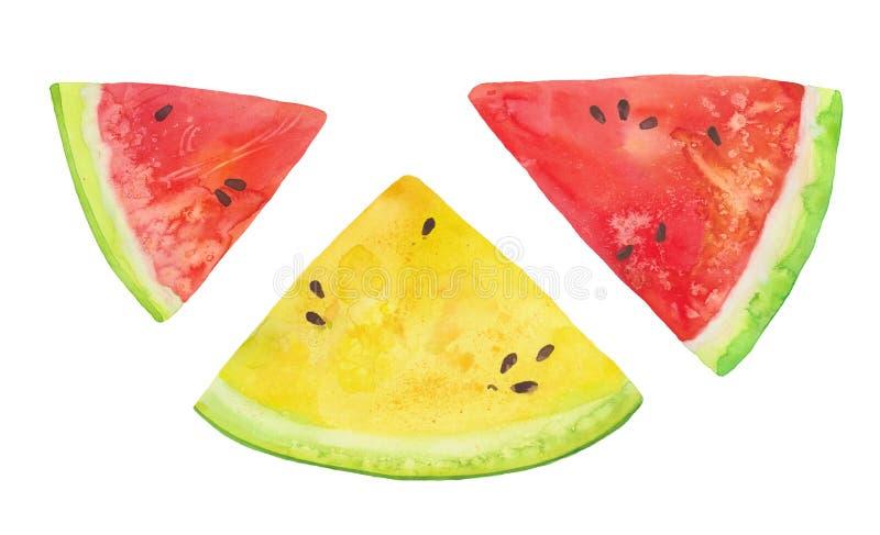 Rebanadas de sandías rojas y amarillas ilustración del vector