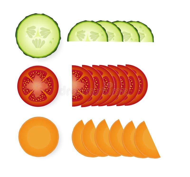 Rebanadas del tomate, del pepino y de la zanahoria con las hojas verdes stock de ilustración