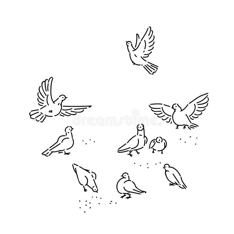 Rebanho de sementes selvagens urbanas das beijocas dos pombos Voo ajustado e linha de assento branco preto dos pássaros do vetor  ilustração do vetor