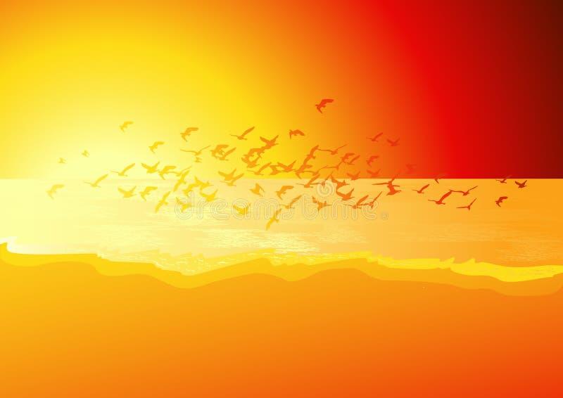 Rebanho dos pássaros acima do mar no por do sol ilustração royalty free