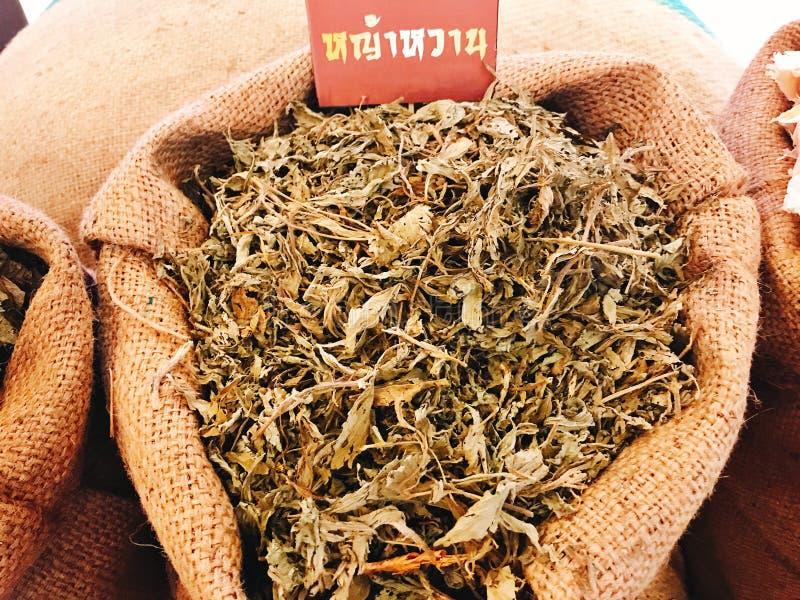 Rebaudiana do Stevia ou Candyleaf ou Sweetleaf ou Sugarleaf secado no saco imagem de stock